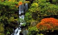 rwel.com.ua_0674641173_00000305